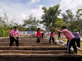 19 สิงหาคม. 2563 นักศึกษาสาขาวิชาการจัดการโลจิสติกส์ วิทยาลัยโลจิสติกส์และซัพพลายเชน ร่วมกันเตรียมแปลงดินสำหรับการปลูกสมุนไพร ในแปลงสาธิตปลูกสมุนไพรตามแนวปรัชญาเกษตรพอเพียง